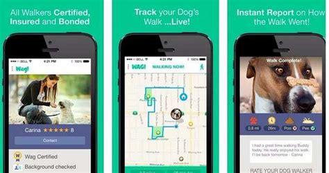 wag walking reviews wag walking app reviews does it work or scam byadvisor