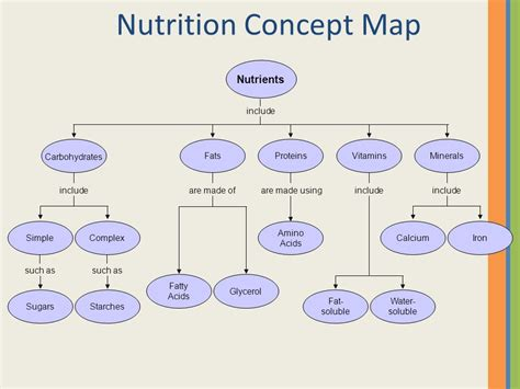 carbohydrates nutrient function food sense nutrition ppt