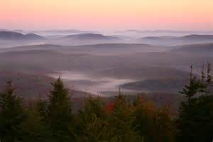spruce knob morning wv autumn forest forest foliage