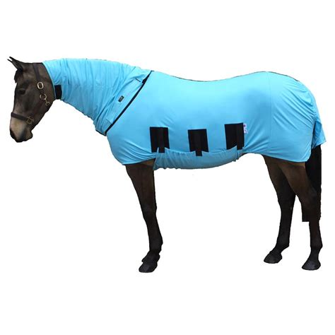 bug rugs for horses bug anti itch fly rug haint blue from snuggy hoods australia