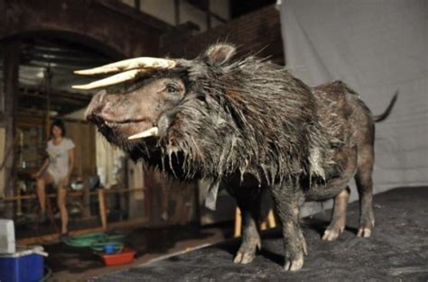 secret   aurochs neatorama