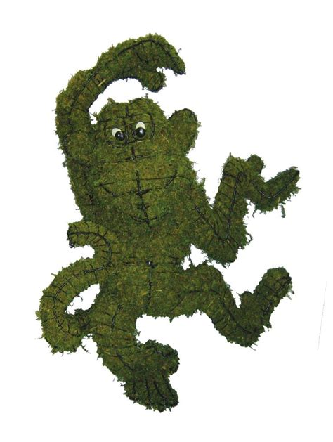 topiary monkey 41 best images about braun horticulture topiary