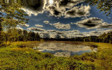 small pond nature lake dark sky hd wallpaper