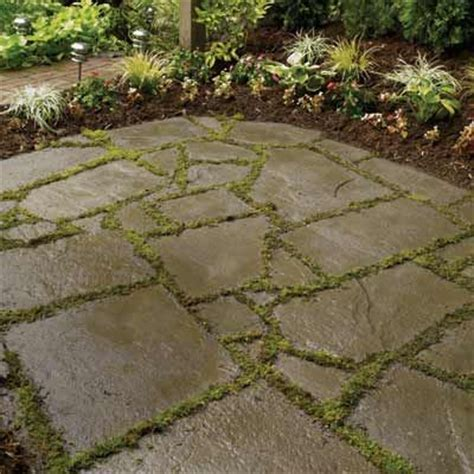 25 best ideas about flag stone on pinterest diy landscaping ideas landscaping ideas and yard