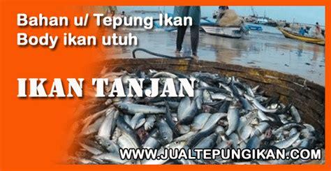 Harga Pelet Apung Ikan Nila jual tepung ikan