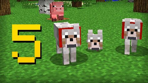 6 Things You May Not Know About Minecraft Vidoemo - minecraft 5 things you didn t know about the wolf youtube