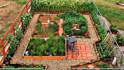 Backyard Vegetable Garden Layout by 24 Fantastic Backyard Vegetable Garden Ideas