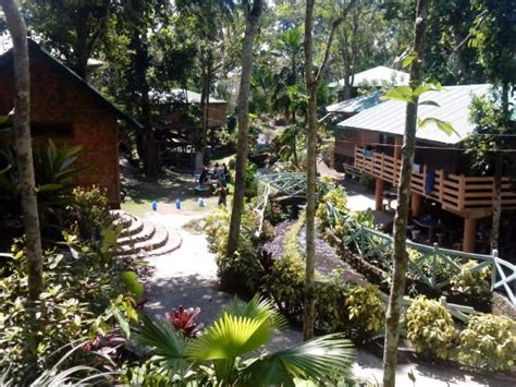 Cottages Laguna by Cottages And Trees Picture Of Bato Springs San Pablo