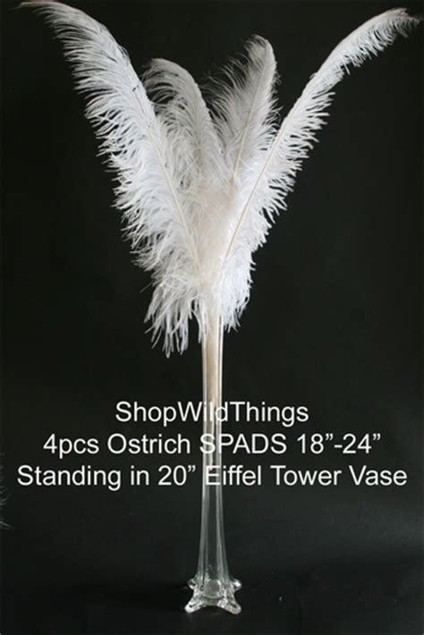 white feathers white ostrich feather feather centerpiece