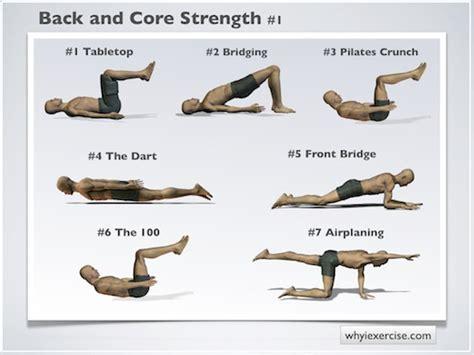 back exercises at home back strengthening exercises illustrated with lifelike