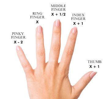 the ring size chart learning ring and gift
