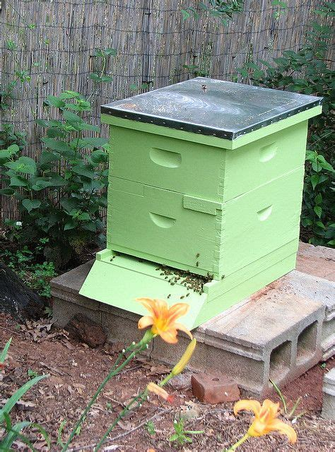 backyard honey bee hive pinterest the world s catalog of ideas
