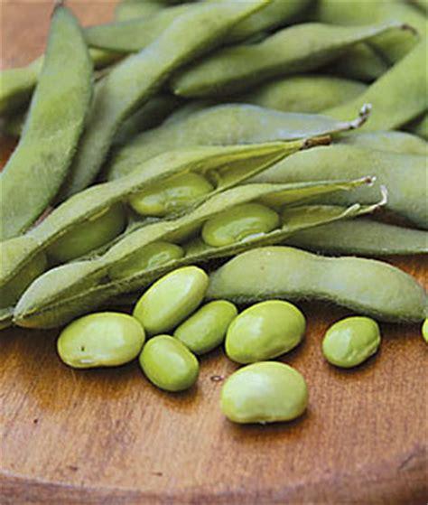 5 vegetables that grow well in the southwest veggie gardener