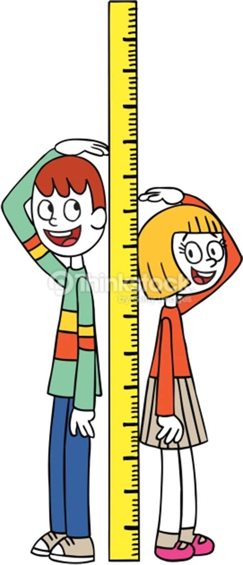 picture height height measure vector art thinkstock