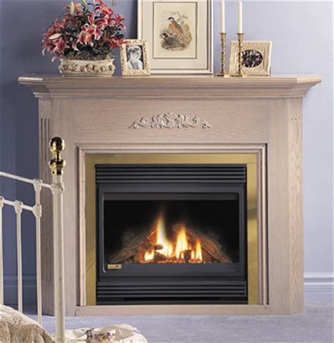 Gas Fireplaces Maryland by Rockland Woodworks Stoves Baltimore Maryland Woodstoves