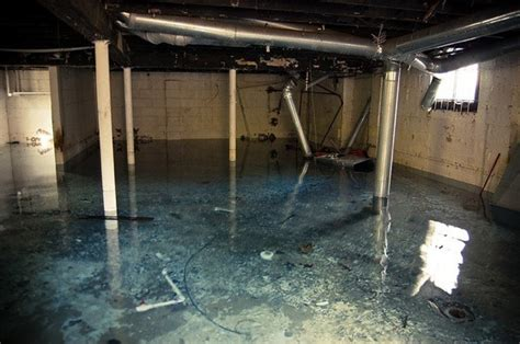 save your home s basement by waterproofing it larry wingo