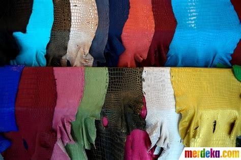 006 Kulit Buaya foto menengok industri pengolahan kulit buaya di negeri