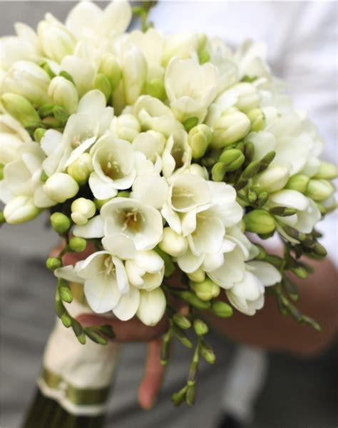 fresie fiori fresia silviadeifiori