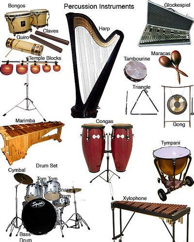 best percussion instruments 25 best ideas about percussion instrument on