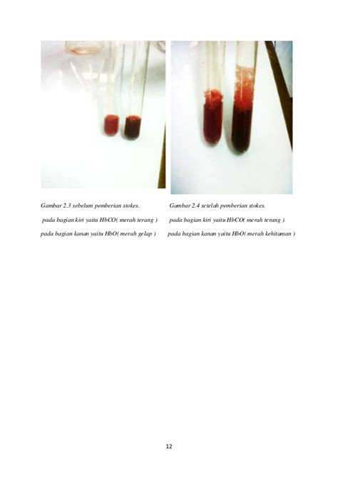 Pengantar Kimia Buku Panduan Kuliah Mahasiswa Kedokteran Program St makalah biokimia