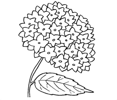 coloring pages flowers pdf flower coloring pages 22 free psd ai vector eps