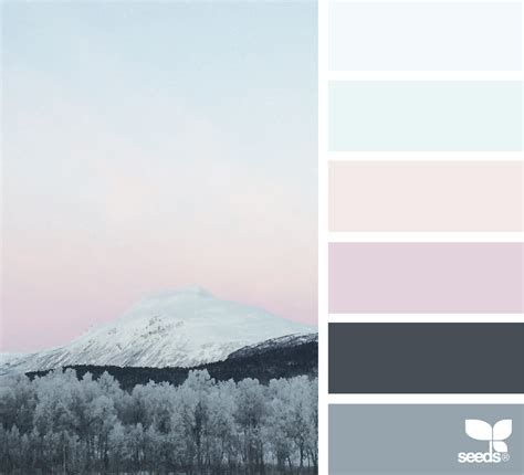 colors of winter color chill design seeds