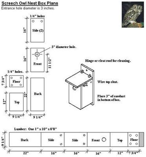 Audubon Bird House Plans 25 Best Ideas About Owl Box On Owl House