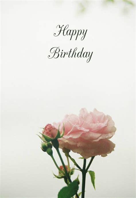 Happy Birthday Wishes Roses Unique Happy Birthday Wishes To Send To The Ones You Love
