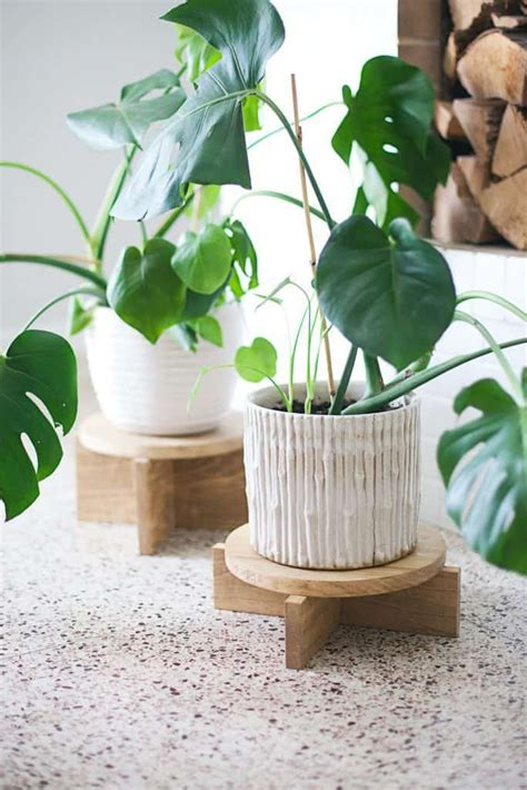 diy modern wood plant stands  beautiful mess