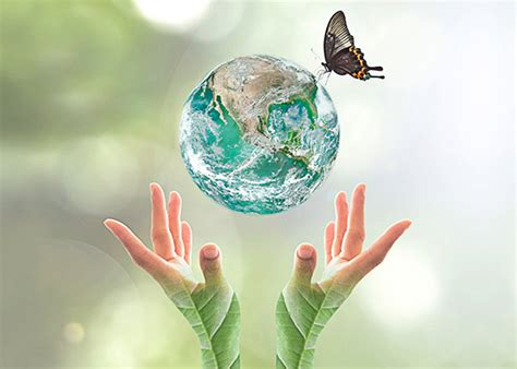 what is the green house effect essay on green house effect and global warming for students