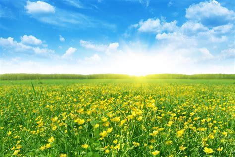 spring start spring the vernal equinox new beginnings