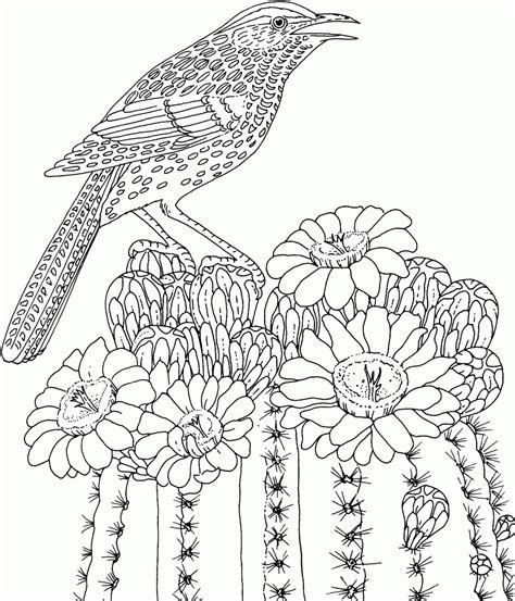coloring in pages printable free printable advanced coloring pages coloring home