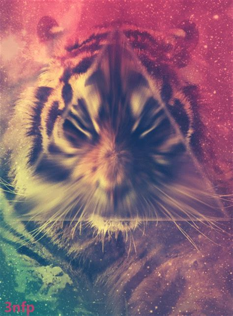 Imagenes Hipster Illuminati | tiger gif pictures photos and images for facebook