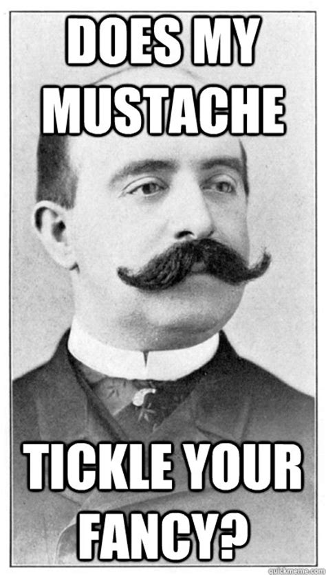 Tickle Memes - does my mustache tickle your fancy 19th century hipster