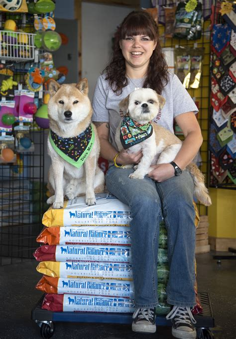 yuppy puppy spokane grooming business caters to pets owners the spokesman review
