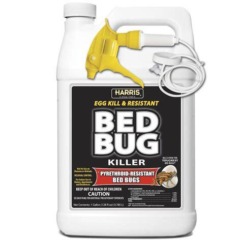 combat   source kill max roach kill gel   home depot