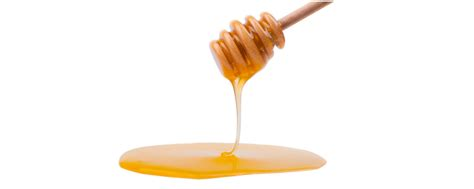 carbohydrates honey honey sugar carbohydrates all articles about ketogenic diet