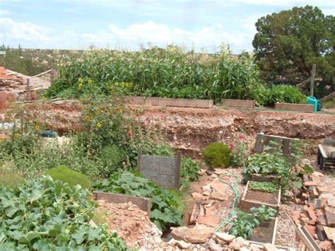 Desert Vegetable Garden Homesteading Part 2 High Desert Gardening