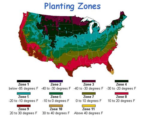 gardening in zone 4 simplesproutmom this is about simple ways to garden