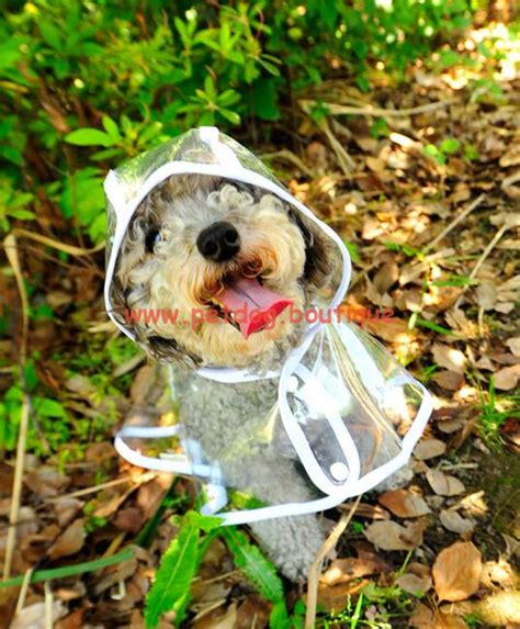 small raincoat raincoat small raincoat raincoats for dogs pet boutique