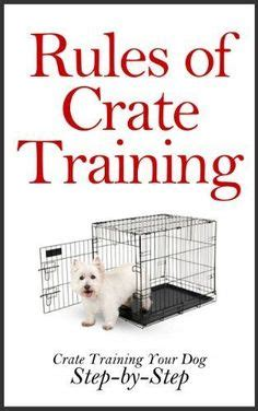 crate puppy while at work 1000 ideas about crates on crate pads crate cover and crate
