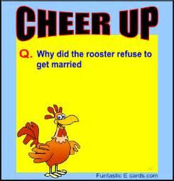 style jokes stupid animal joke ecards animated animal jokes on picture postcards