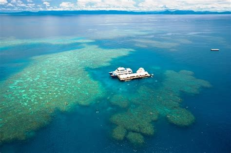 great barrier reef pontoon cairns tours attractions the cairns port douglas