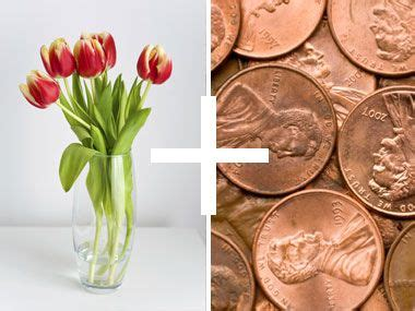 how do flowers last how to make flowers last longer 8 pro tricks coins hair sprays and copper