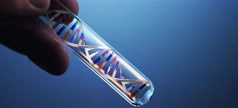 dna test accused of of privacy after dna testing