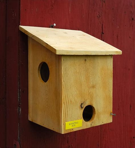 house of krumbach roosting box
