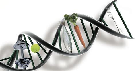 costo test dna nutrici 243 n ortomolecular precio nutrigen 243 mica y nutrigen 233 tica