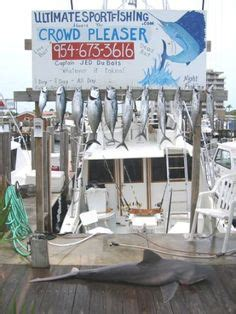charter boat fishing pompano beach fl 100 best florida fishing images on pinterest fishing