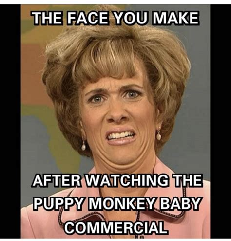 Commercial Memes - these puppy monkey baby memes try to make sense of super