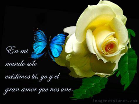 imagenes de mariposas lindas con frases im 225 genes de rosas con frases romanticas de amor im 225 genes